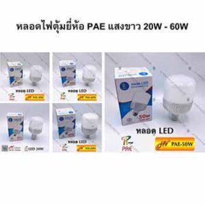 หลอดไฟตุ้มยี่ห้อ PAE แสงขาว 20W - 60W